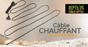 animalerie/cable-chauffant-pour-terrarium-hc-expert-reptil-us-p-38085.html