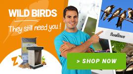 Save wild birds