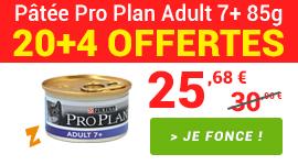Promotion Pro Plan