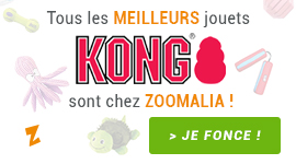 les meilleurs jouets KONG sont chez Zoomalia !