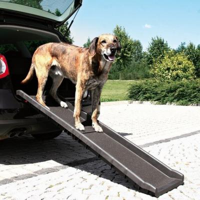 Rampe d'accès pour chien