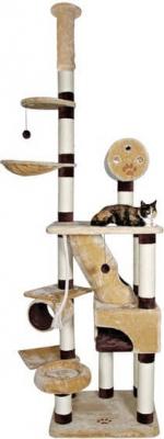 Árbol para gatos Belorado, desde el suelo hasta el techo