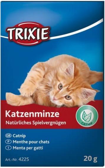 Menthe pour chat Catnip
