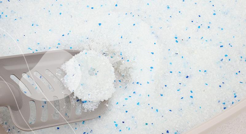 litiere silice agglomérante et sans odeur