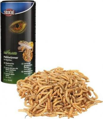 Larves de vers de farine séchées REPTILAND