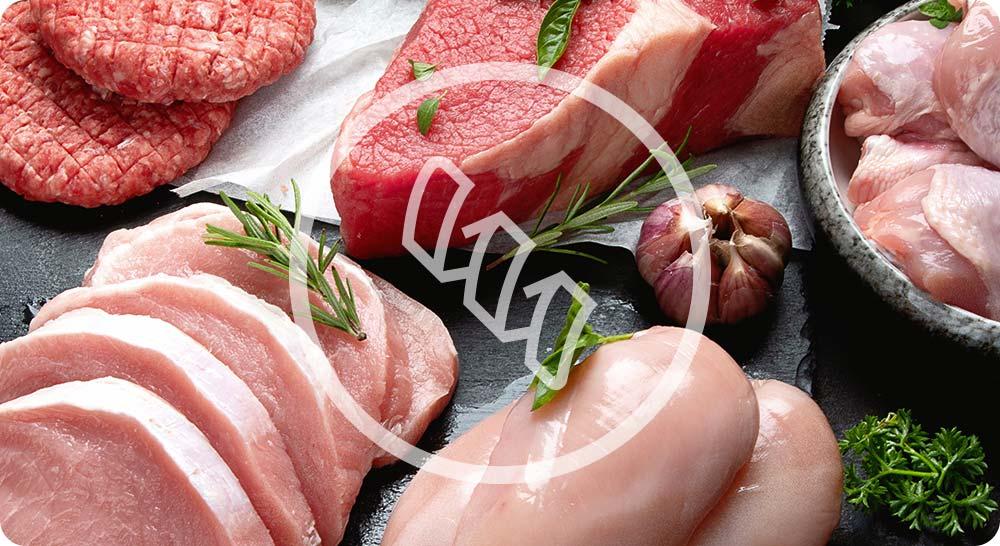 Viandes et protéines