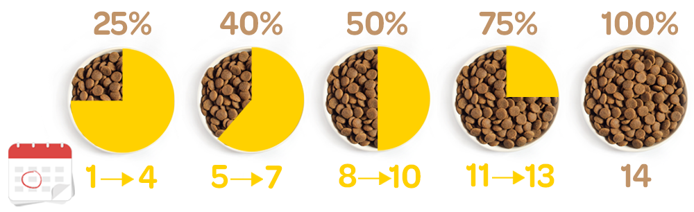 transition alimentaire croquettes optimus grain free low carb