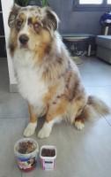 10493_Friandises-pour-chien-Bony-Mix_de_EMILY_15510765955e133a60ed58b5.48910687