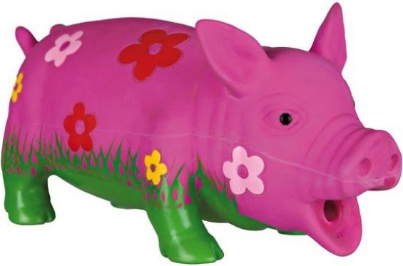Cochon fleuri, latex