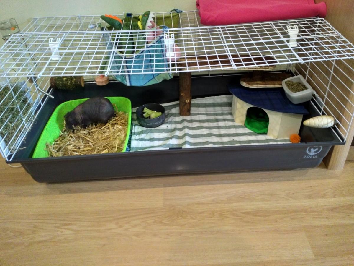 Casa esquinera para roedores y conejos - Casas para conejos enanos ...