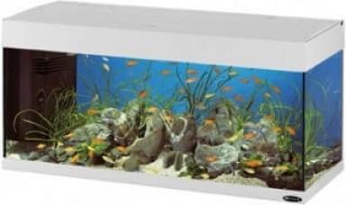 Aquarium DUBAI 120 240L