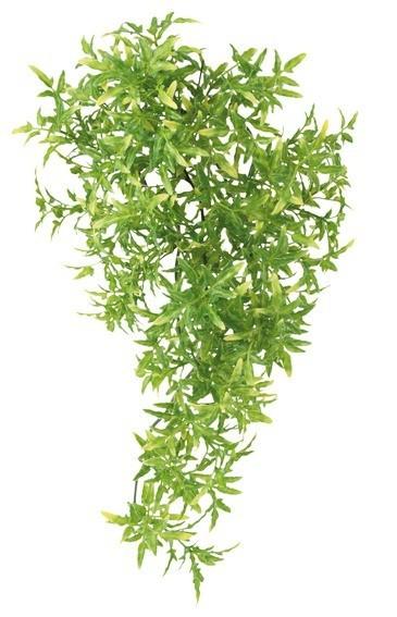 Plante de la jungle croton en plastique d coration for Plante jungle