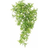 Plante de la jungle Croton en plastique