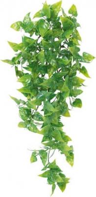Plante de la jungle Phyllo en plastique