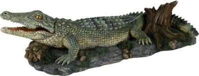 Crocodile par aération