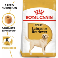 Royal Canin Breed Labrador Retriever Adult