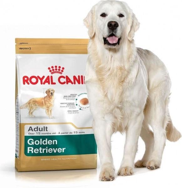 Royal Canin Breed Golden Retriever 25 Adult