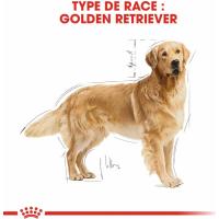 Royal Canin Breed Golden Retriever Adult