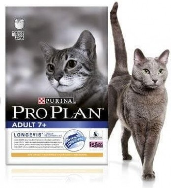 Pro Plan Cat Adult 7+