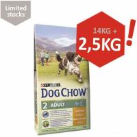 DOG CHOW Adulte Poulet/Riz
