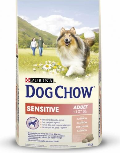 dog chow pour chien sensitive au saumon croquettes chien. Black Bedroom Furniture Sets. Home Design Ideas