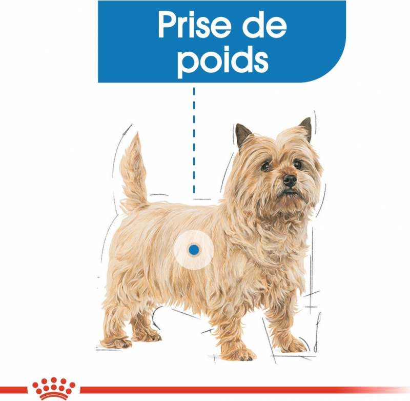 Royal Canin Mini Adult Light Weight Care