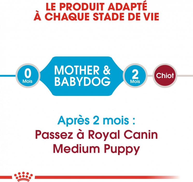 Royal Canin Medium Starter Mother & Baby