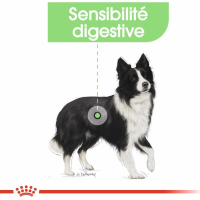 Royal Canin Medium Adult Digestive Care