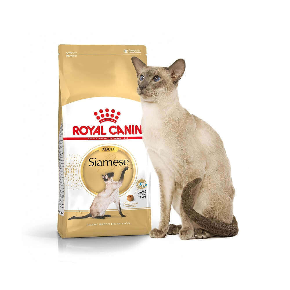 royal canin siamese adult dry cat food. Black Bedroom Furniture Sets. Home Design Ideas