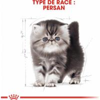 ROYAL CANIN KITTEN PERSIAN 32