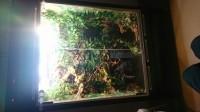 JBL-CristalProfi-Greenline-Filtre-exterieur-pour-aquarium_de_Remy_13923844955b7b12562efc28.90679271