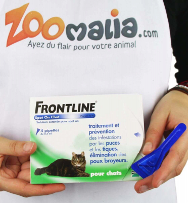 FRONTLINE Pipette anti-parasites chat Spot on