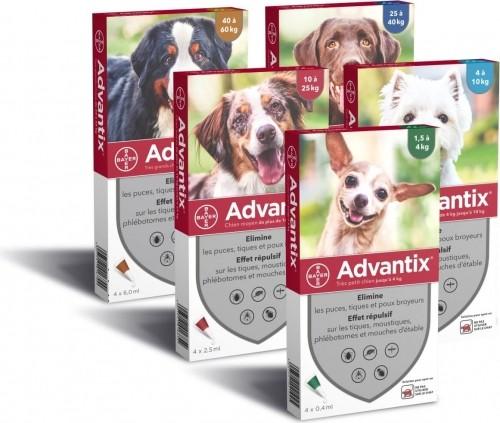 ADVANTIX Pipette anti-parasitaire pour chien