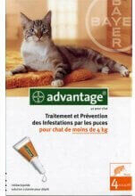 Pipettes anti-parasites Advantage chat -de 4kg