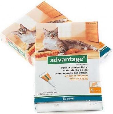 Pipetas antiparasitarias para gato y conejos  Advantage