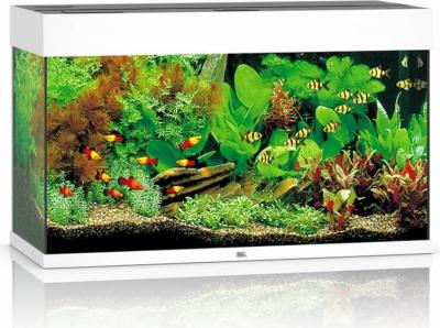 JUWEL Aquarium RIO LED blanc