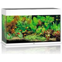 JUWEL Aquarium RIO LED blanc (1)
