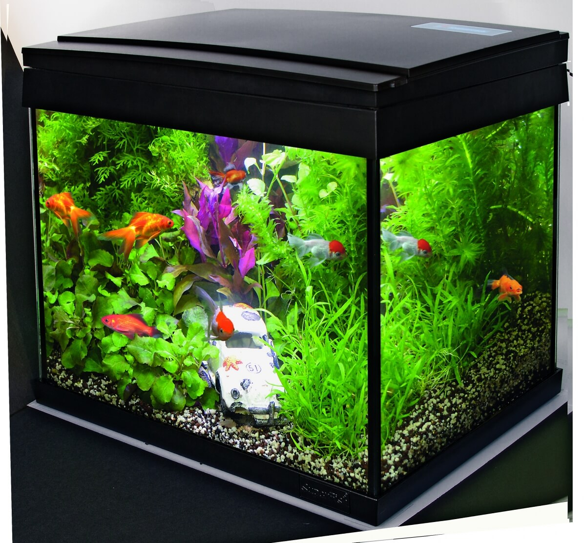 Aquarium aqua 20 led kit poisson rouge aquarium et meuble for Deco aquarium poisson rouge
