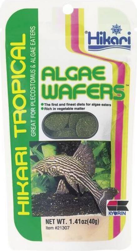 Hikari Algae Wafers Comprimés pour poissons de fond herbivores