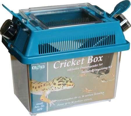 Bo te pour conserver les insectes namiba cricket box small - Boite a insecte ...