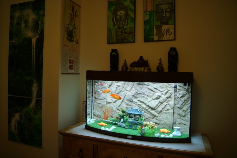 aquarium juwel vision brun led aquarium et meuble. Black Bedroom Furniture Sets. Home Design Ideas