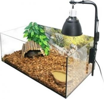 Komplettset eines natürlichen Terrarium für Landschildkröten, 60 x 35 x 23cm