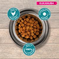 Eukanuba Active Adult Small Breed Pour Chien de Petite Taille
