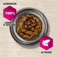 Eukanuba Daily Care Sensitive Skin pour chien Adulte Sensible