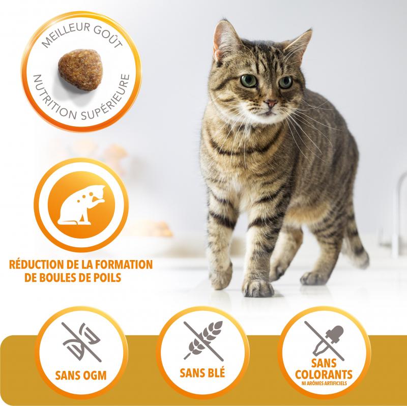 IAMS Hairball Control au Poulet pour chat Adulte