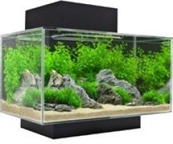 Aquarium Fluval Edge petit modèle 23 litres_0