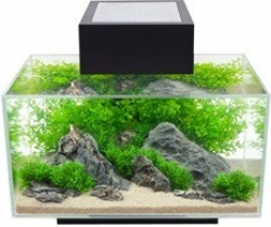 Aquarium Fluval Edge petit modèle 23 litres_2