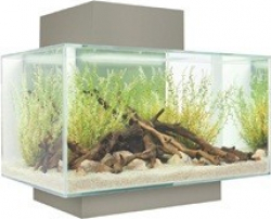 Aquarium Fluval Edge petit modèle 23 litres_3