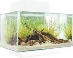 Aquarium Fluval Edge petit modèle 23 litres_4