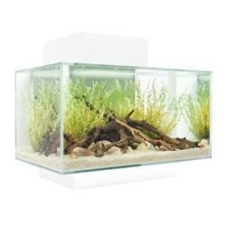 Aquarium Fluval Edge 23 L Glossy_4